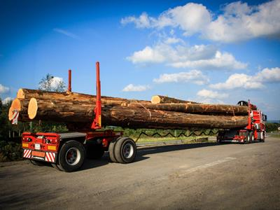 Built on 2 or 3 axles, this lightweight version of the self-tracking trailer is suitable for transporting logs.