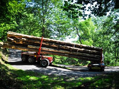 3-axle self-following trailer designed for transporting logs.